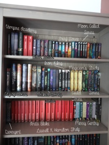 bookshelf 1-1